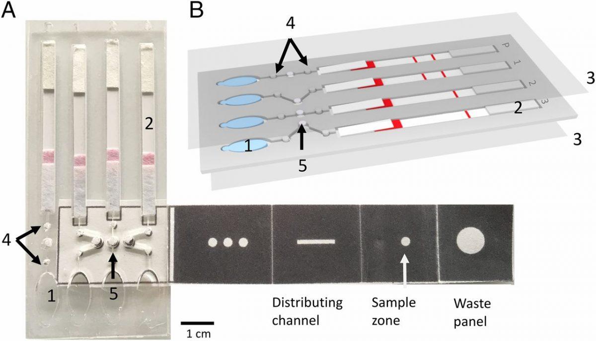 Origami: dispositivo de microfluídica baseado em papel para diagnósticos rápido e barato da malária