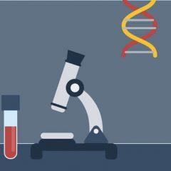 Ciência, Tecnologia e Inovação Brasil.